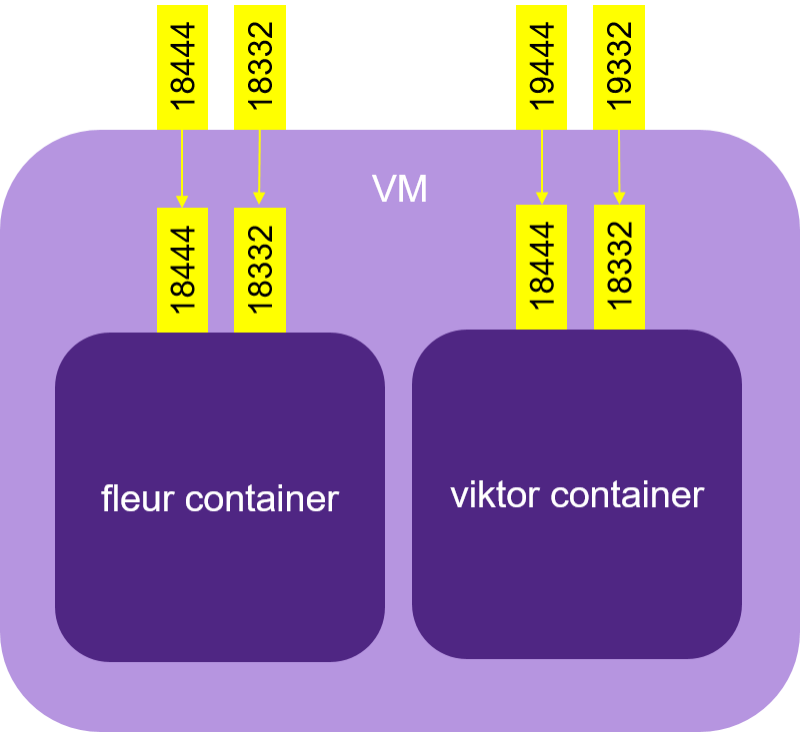 VM Ports mapped to ports on fleur and viktor containers | Synopsys