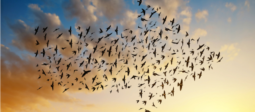 Cloud migration for business: How and why business is migrating to the cloud