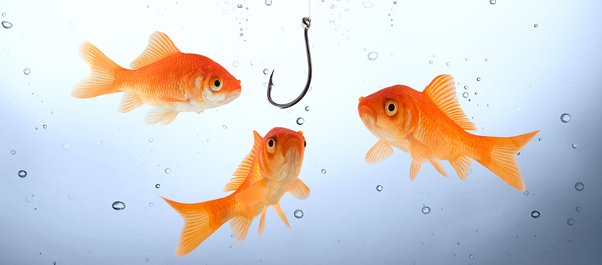 Every IT department has fake phishing campaigns to see how vulnerable their employee base is.