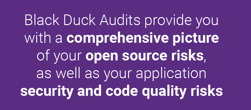 Black Duck Audits provide you with a comprehensive picture of your open source risks, as well as your application security and code quality risks
