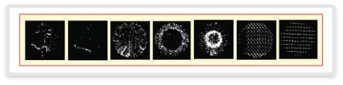 図9: SPARはウェーハ全体の欠陥とビン・データの空間パターンの認識を自動化する