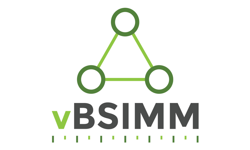 Vendor Analysis (vBSIMM)
