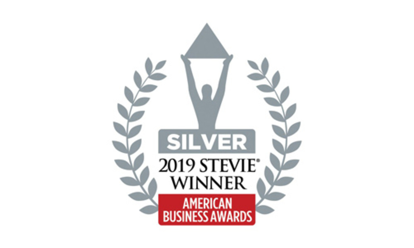 Seeker Silver Stevie Award