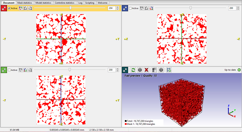 Visualization and segmentation of micro-CT data in Simpleware ScanIP