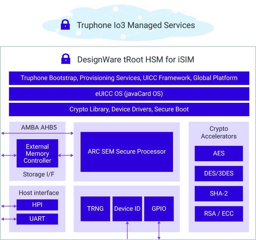 DesignWare tRoot HSM for iSIM Block Diagram